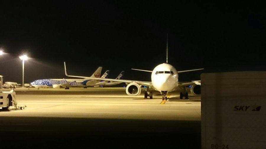 Night Lights Night Photography Airport Airplane ジンベイザメ