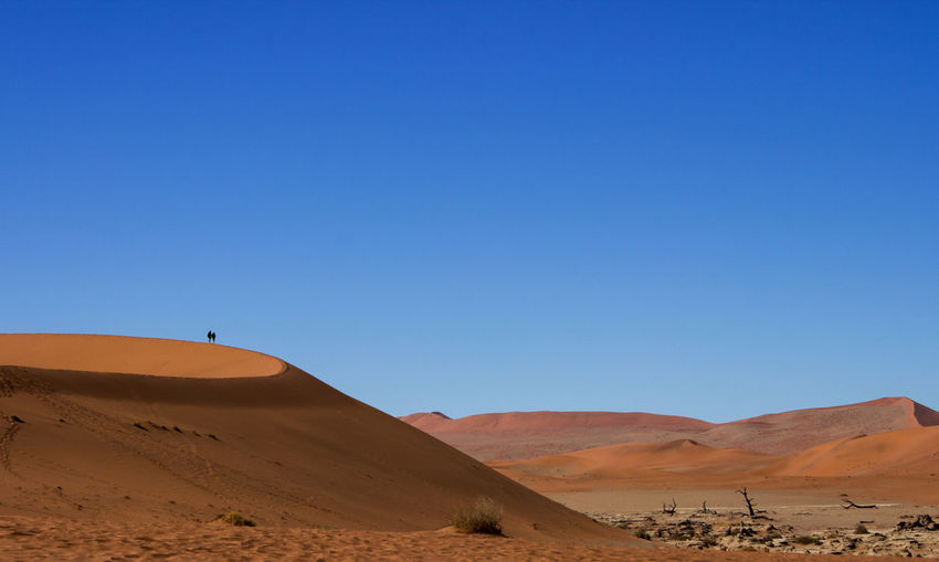 Namibia Sossusvlei Arid Climate Barren Beauty In Nature Blue Clear Sky Day Desert Geology Landscape Nature No People Outdoors Physical Geography Remote Sand Sand Dune Scenics Sky Tranquil Scene Tranquility