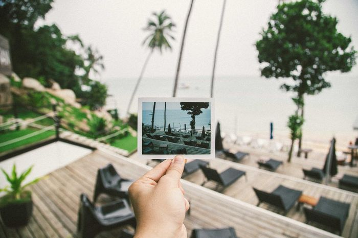 I woke up like this. Travel Travel Photography EyeEmMalaysia Traveling Film Photography Film A Frame Within A Frame Polaroid Filmisnotdead Believeinfilm