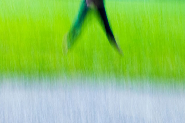 Stracture Hintergrundgestaltung Struktur Abstrakt Art Abstract Art Nice Areal View Green And Grey Grass Nature Close-up Green Color No People Beauty In Nature Fragility Backgrounds Blurred Motion Freshness Outdoors