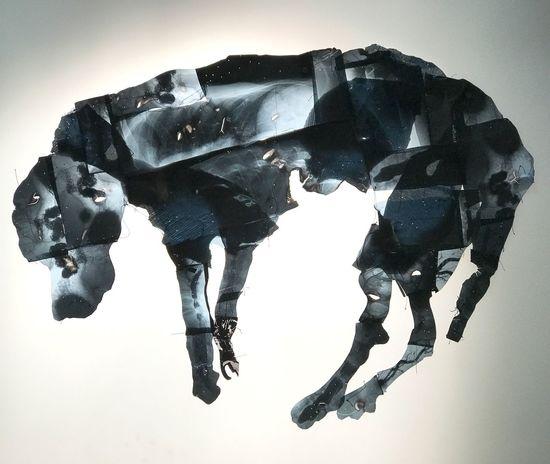 Dog art art collection swiss