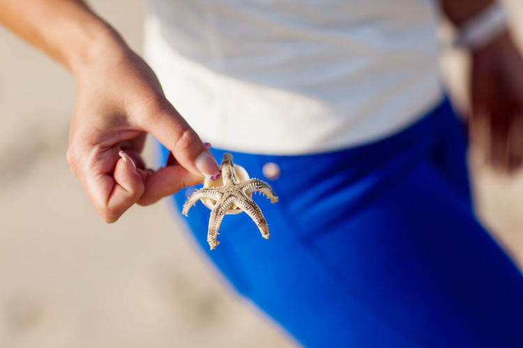 Girl's hand holds a starfish on a blue background, close-up