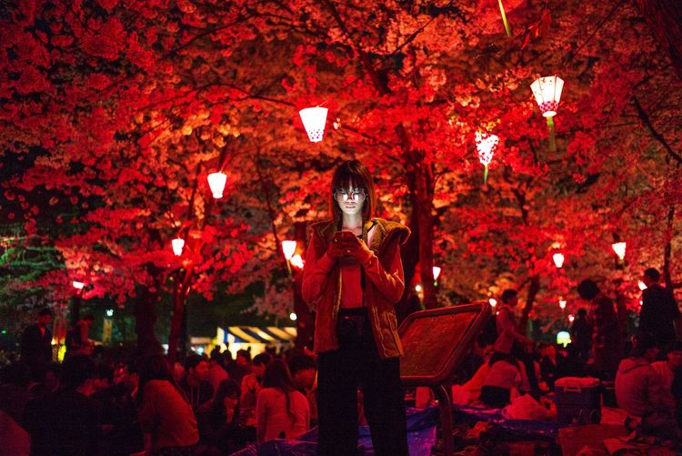 Red Night Illuminated One Person Lighting Equipment Tree HUAWEI Photo Award: After Dark Capture Tomorrow