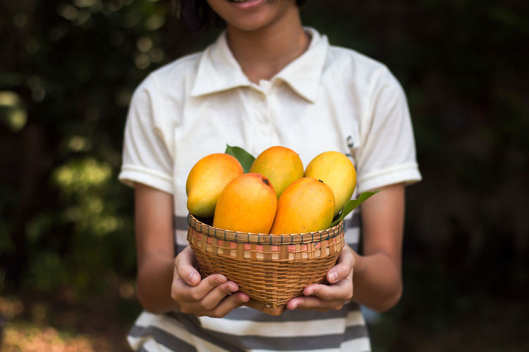 Midsection of girl holding mangoes in basket