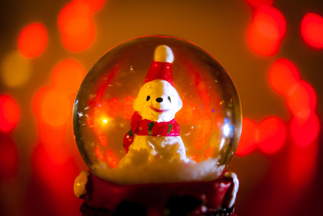 A little cute white bear in a snow chisrtmas globe Christmas Christmas Decoration Christmas Hat Christmas Lighting Christmas Lights Christmas Snow Globe Cute Decoration Gifts Happiness Happy Indoors  Little Bear Ornamental Smiling Face Snow Flakes Snow Globe Sonyalpha Sphere Still Life StillLifePhotography Warm Colors Whishes Wintertime