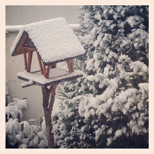 #winter #merkstein #herzogenrath Winter Herzogenrath Merkstein