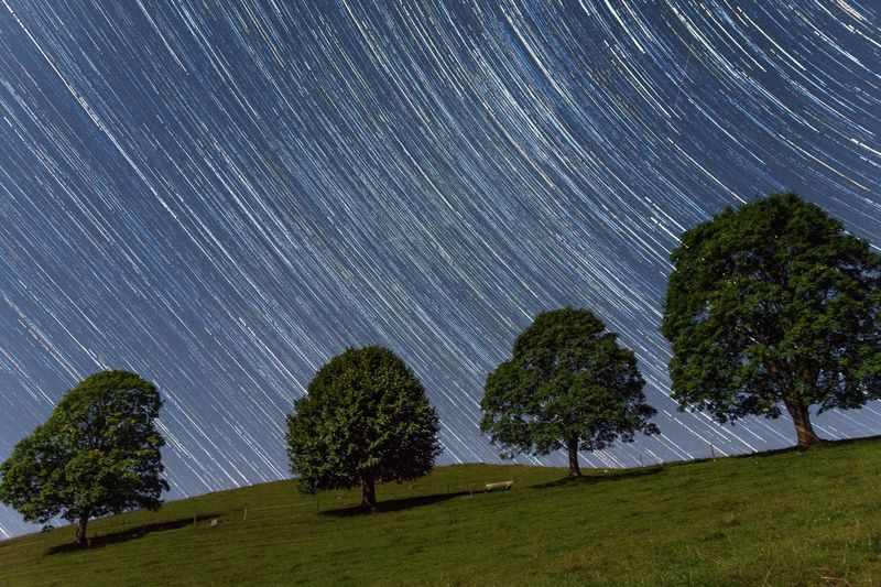 Star - Space Night Long Exposure Star Trail Astronomy Beauty In Nature Tranquil Scene Tree Nature Scenics Idyllic Sky Constellation Motion Landscape No People Mountain Cloud - Sky Blue Concentric The Week On EyeEm