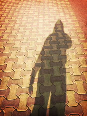 Shadow In Me