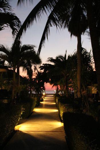 No Filter Relaxing Enjoying Life Vacation Beach Thailand Koh Lanta Hello World EyeEm Nature Lover Beautiful Sunset EyeEm Best Shots