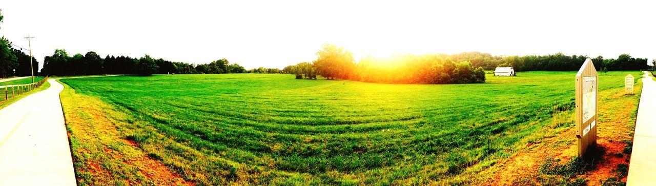 Warm Summer days First Eyeem Photo