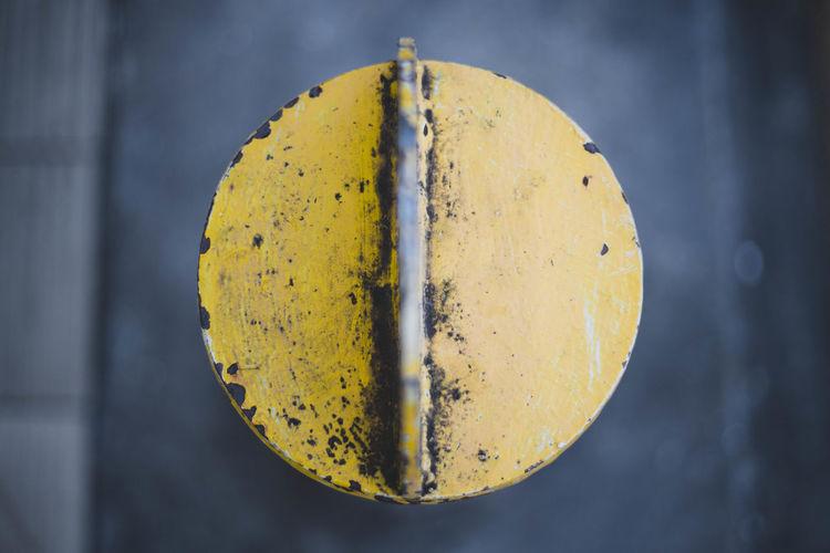 Close-up of yellow fruit hanging on metal