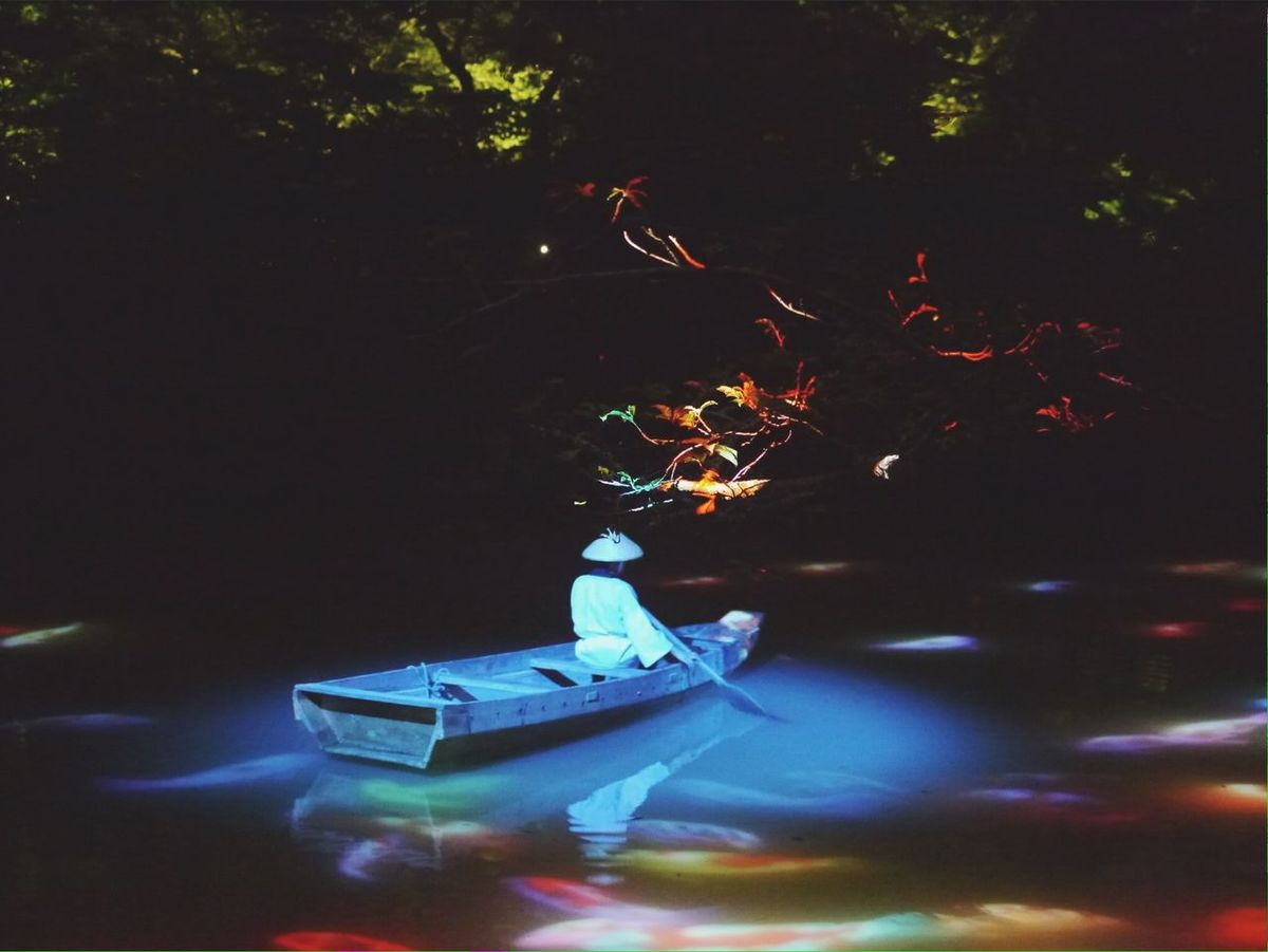 Summer Illusion Mifuneyama Rakuen pond Projection Mapping Drawing Nightphotography Elegance Everywhere Water Reflections Japan Photography de Good Night