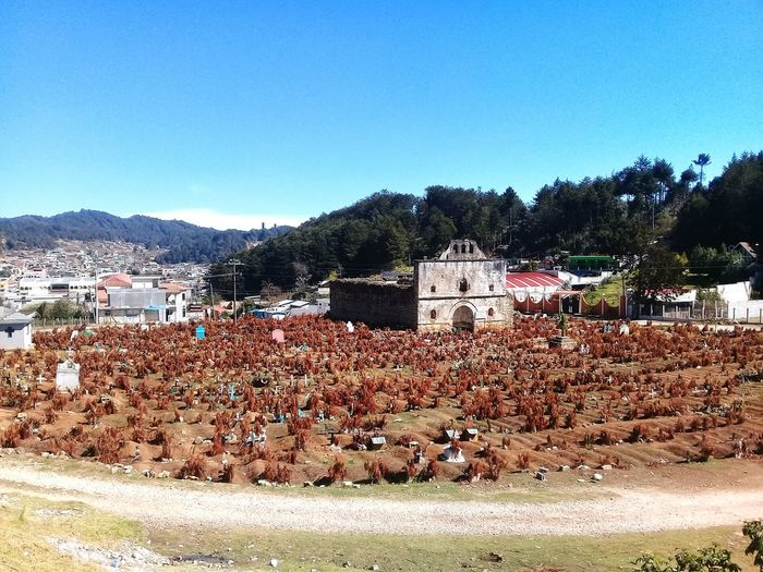 SJC Panteon San Juan Chamula Chiapas Respect For The Deads Large Group Of People Day Outdoors Clear Sky Nature People