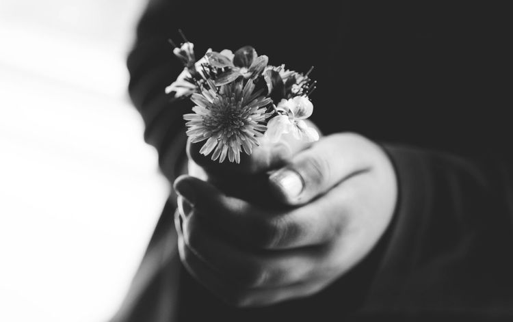 Flower Human Hand One Person Human Body Part Fragility Real People Holding Flower Head Close-up Indoors  Lifestyles Nature Freshness Day People
