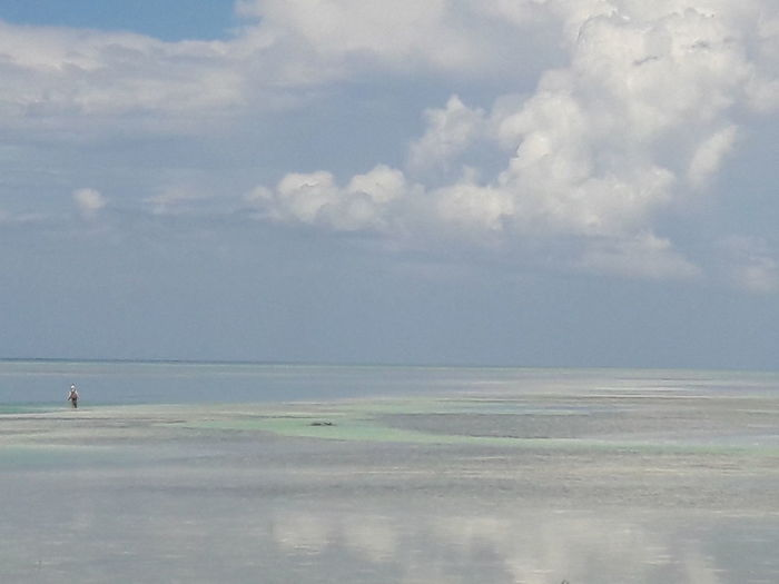 Water Sea Beach Pastel Colored Blue Sky Horizon Over Water Cloud - Sky Landscape