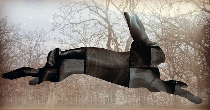 Run Bare Tree Weapon War Tree History Sculpture Statue Military Cannon Sky No People Outdoors Army Day Suit Of Armor