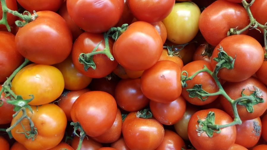 tomatoes 🍅 Tomato Tomatoes Tomato Sauce Tomato Plant Tomatoes🍅🍅 Tomatoes Up Close Tomatoes Cherry Wild Tomatoes Tomatoes Background Tomatopix Fruit Red Healthy Lifestyle Full Frame Vegetable Agriculture Tomato Vitamin Biology Close-up