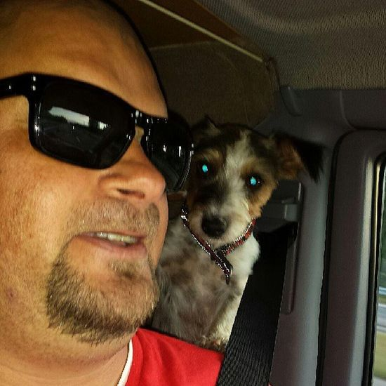 Me and my home girl :) Dog DogLove Jackrussell Jackrusselllove jack jackie jacky halmstad halland drive e6