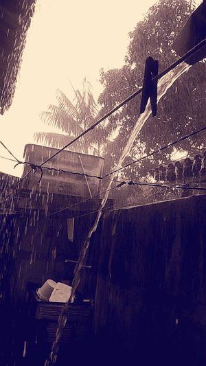 Esse é meu país tropical: a foto foi tirada em uma chuva torrencial no estado do Pará! Famosa pelo clima quente e úmido a Amazonia por vezes chove até três dias sem intervalo. Os Rios e a Vegetação é abundante. Essa foto foi minha mae quem fez, dedico essa imagem à ela. Tropical Climate Tropicalcoutry Tropical Paradise Tropicalrain Amazonia_paraense Amazonia Amazon Rainforest Brazil
