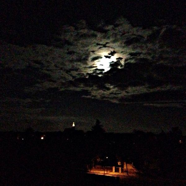 Home Medusa La Luna Good Night The Dark Side Of The Moon