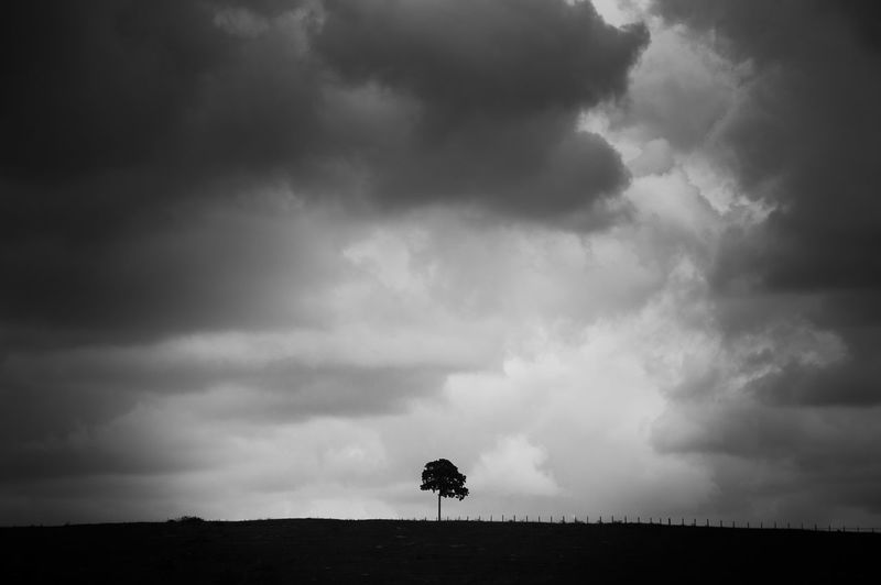 Silhouette of horse on field against storm clouds