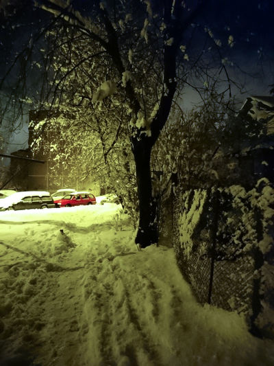 Tree Car Winter No People Nature Snow Outdoors Cold Temperature Beauty In Nature Night Evening Snow ❄ Snowfall Snowflakes Winter Is Coming Angelina B Sony Xperia Photography. Tree Happy First Snow Nature Beauty In Nature Kids Happy Early Snowfall Wanderlife