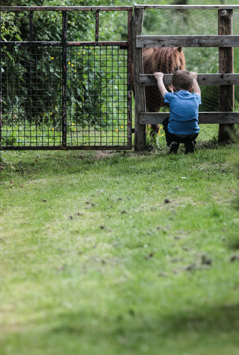 Rear view of boy playing with horse while crouching on field