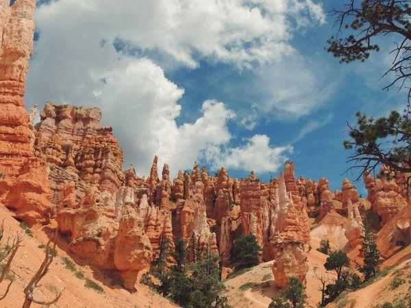 Bryce Canyon Hoodoo Rock Formation Orange Utah The Week On Eyem The Great Outdoors - 2017 EyeEm Awards