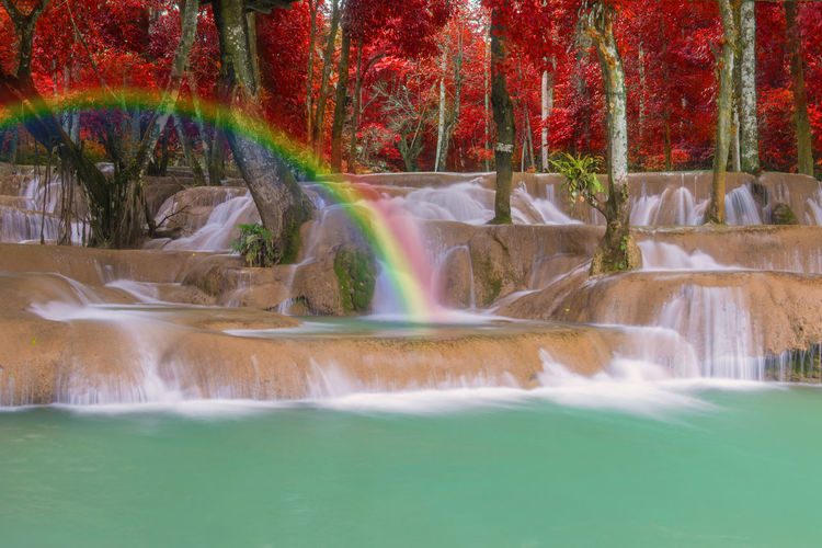 Motion Water Long Exposure Beauty In Nature Scenics - Nature Waterfall Flowing Water Tree Nature Travel Destinations Blurred Motion No People Plant Flowing Day Splashing Fountain Tourism Rainbow Power In Nature Outdoors Falling Water Spraying