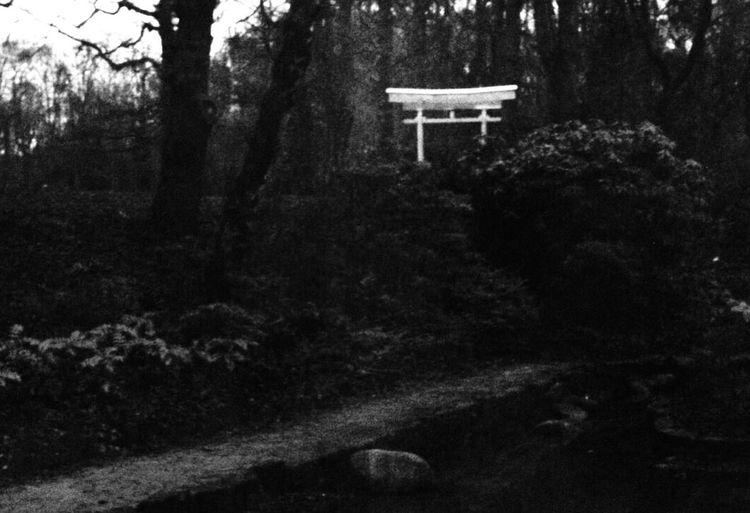 Motherwell Barons Haugh Japanese Garden Black And White Black & White Scotland