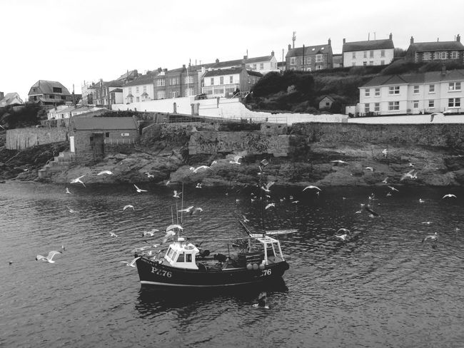 Cornwall Uk Porthleven Fishing Boat Seagulls Vintage Fishing Harbour