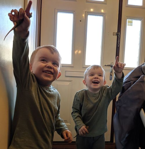 Cheerful brothers pointing while standing at home