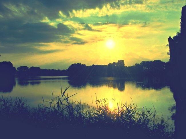 Ředický rybník (Redice's pond) in early morning Pond Czech Czech Republic Morning Morning Sun Morning Sky Beauty In Nature Lake Nature Reflection Silhouette Sky Sun Sunlight Sunset Water