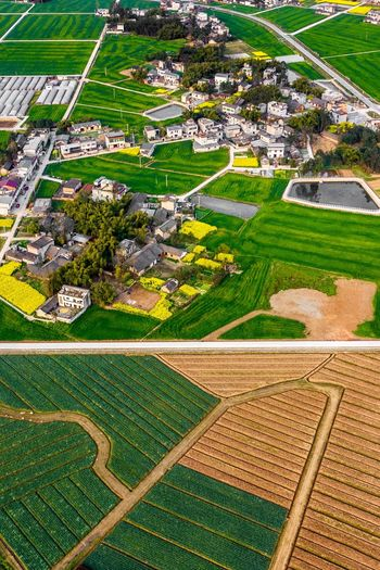 Rural China Rural China Countryside Life Countryside Of China West Of China Field Green Color Landscape High Angle View Aerial View Agriculture Day Land No People Nature Beauty In Nature Architecture Outdoors