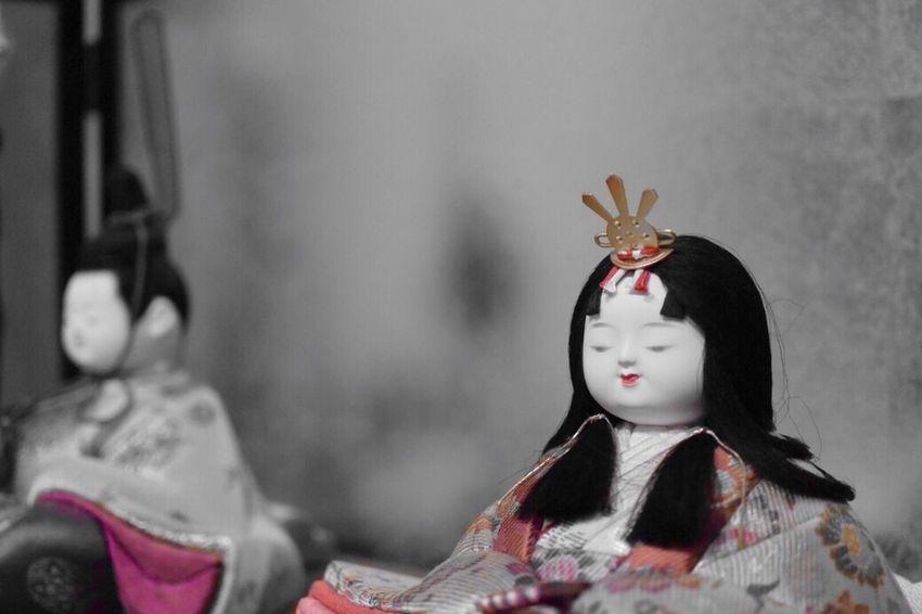 Colorsplash Red ひなまつり Doll Dolls Japan Japanese Style Japanese Culture カラスプ Violet