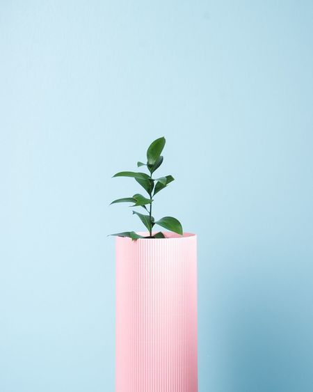 Peaking Plant