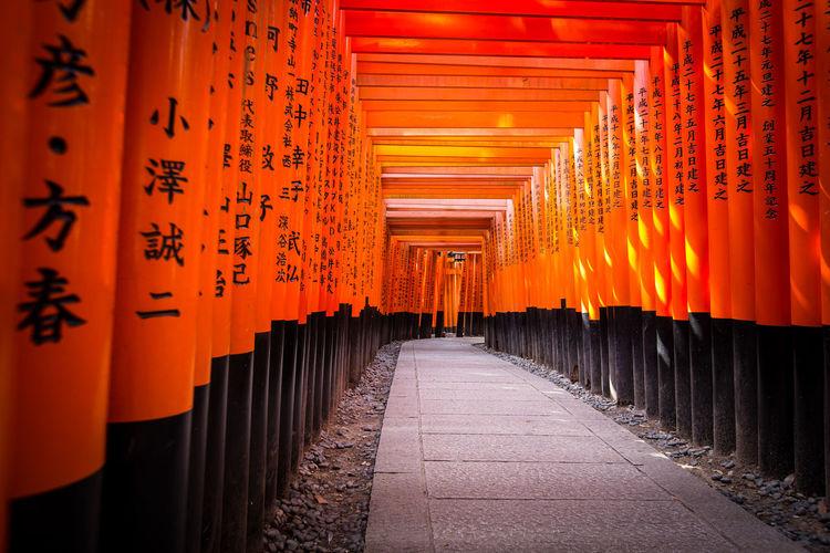 Japan Japan Photography Japanese Temple Shinto Shrine TORII Torii Gate Travel Travel Photography Architectural Architectural Column Building Exterior Famous Place Fushimi Inari Shrine Kyoto Temple Temple - Building Travel Destinations