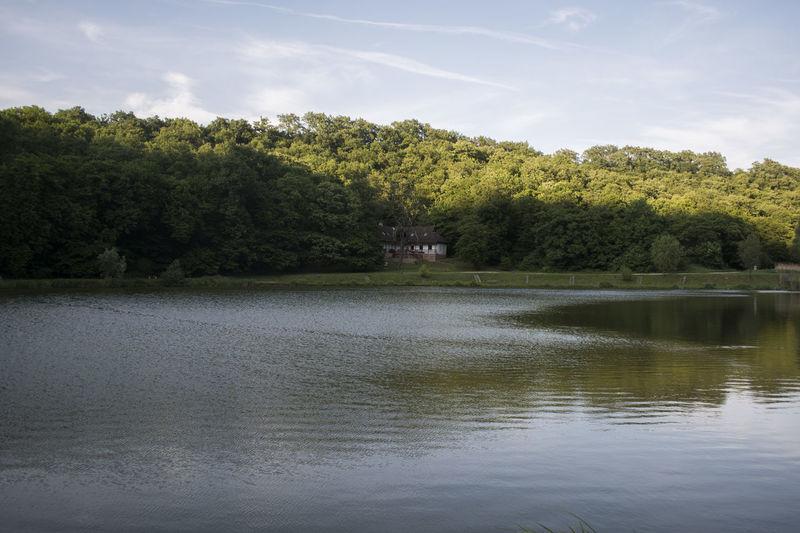 Calm Freedom Lake Landscape Lonley Nature No People Peace