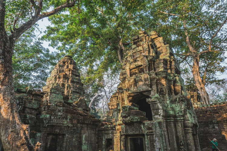 Low angle view of old temple against trees