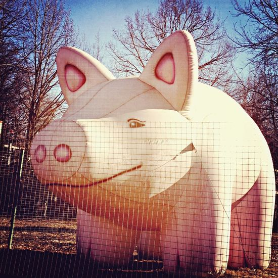 Twin pigs City Vintage Moscow
