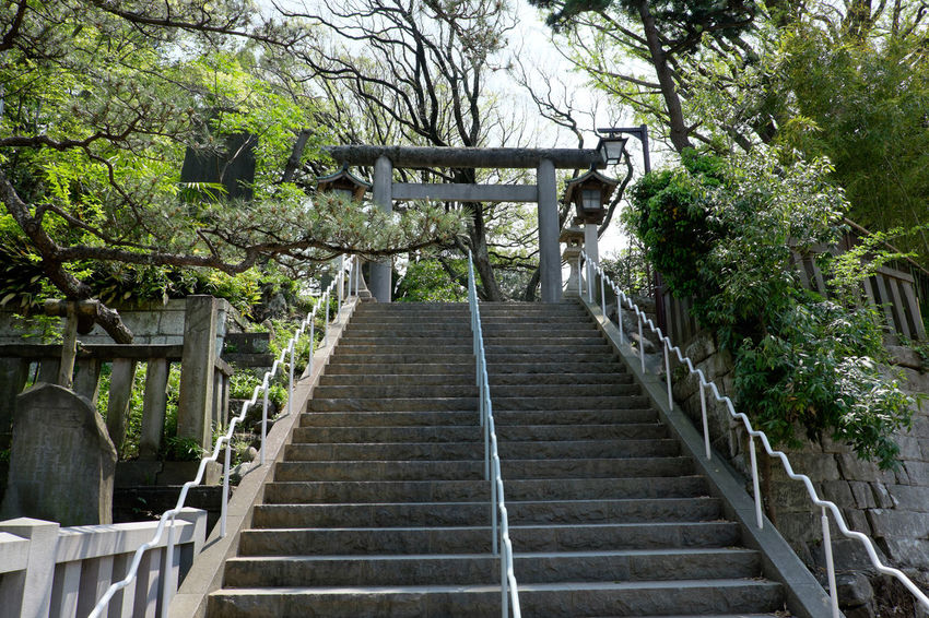 船橋大神宮 Fujifilm Fujifilm X-E2 Fujifilm_xseries Japan Japan Photography Shrine 日本 神社仏閣 船橋 船橋大神宮