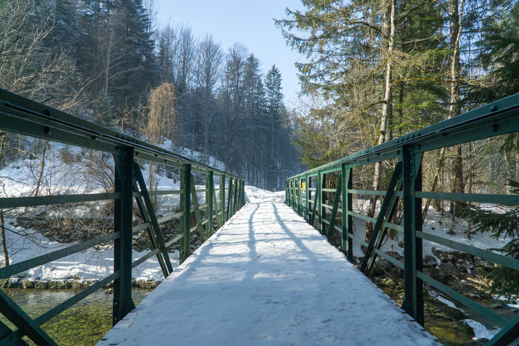 Cold Days Steiermark Austria Grundlsee Bad Aussee Winter Tree Plant The Way Forward Direction Bridge Connection Nature Cold Temperature Forest Railing Land Snow Tranquility Day No People Bridge - Man Made Structure Footbridge Transportation Diminishing Perspective Outdoors WoodLand