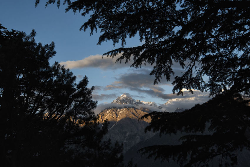 Sunset view of Mount Kinner Kailash range at Kinnaur, Himachal Pradesh. Himachal Pradesh, India Kinnaur Spiti Valley India Travel Adventure Beauty In Nature Danger Day High Kinner Kailash Landscape Low Angle View Mountain Nature No People Outdoors RISK Scenics Silhouette Sky Spiti Tree Capture Tomorrow Capture Tomorrow