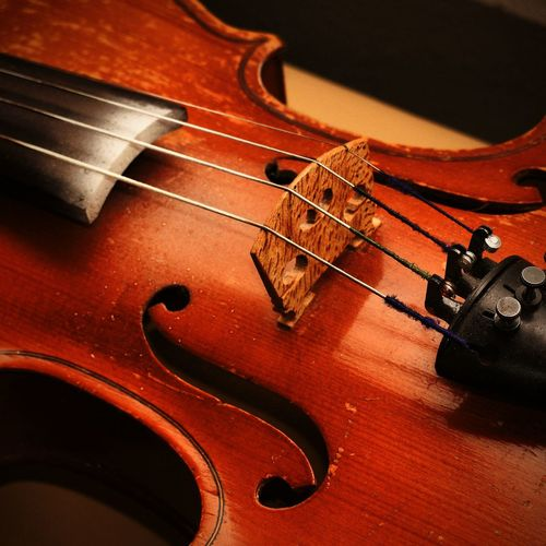 Cropped Image Of Violin
