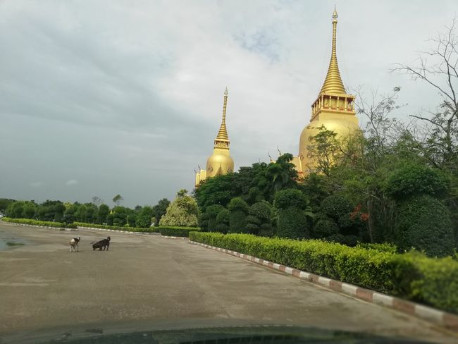 Thai Temple Buddhist Temple BUDDHISM IS LOVE City Place Of Worship Ancient Religion Pagoda Sky Architecture Landscape Historic Stupa Spirituality Temple - Building Mosque Church Buddhism Buddha
