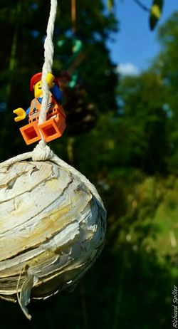 Came in like a cannon ball LEGO Legophotography Nikon D3200 Toy Photography Fun Emmet Minifigures Legominifigures Hello World Check This Out