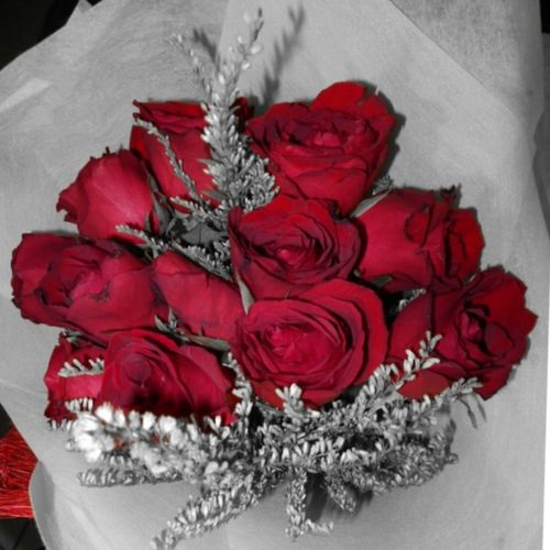 Aah!!this is cute! Roses Redonblackandwhite