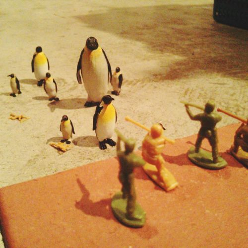 Attack On Titan Penguin ♡ Soldier Toy Photography Miniture Run! EyeEm Miniture Photogrpahy