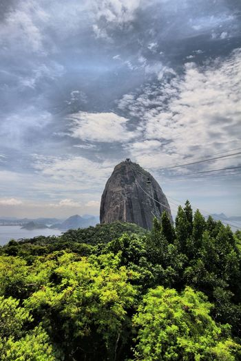 Pan di zucchero 🇧🇷 Brasil Pão De Açucar Cloud - Sky Sky Nature Rock - Object Day Tree Beauty In Nature Architecture Growth Low Angle View Landscape No People Tranquility Scenics Outdoors
