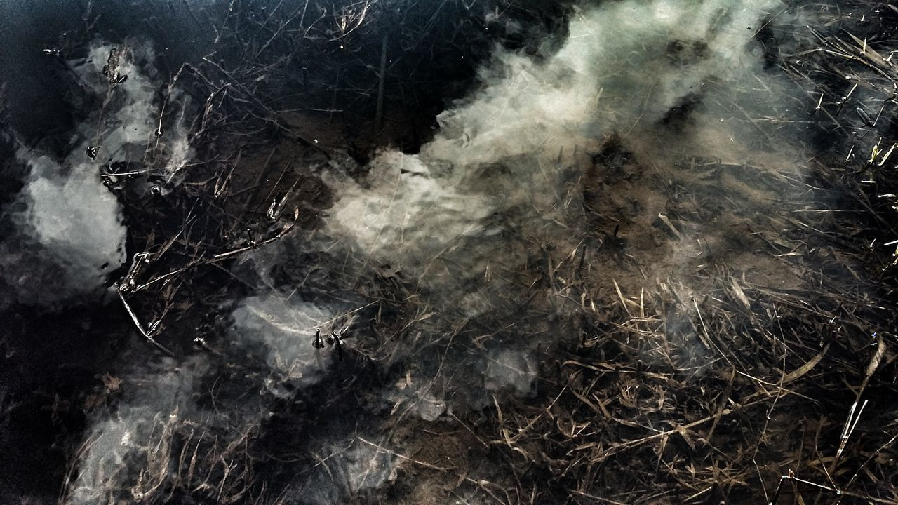 abstract, smoke - physical structure, no people, backgrounds, textured, full frame, motion, close-up, black background, nature, outdoors, day